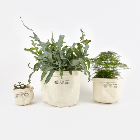 Canvas Pot Cover Set Of Three - Off White