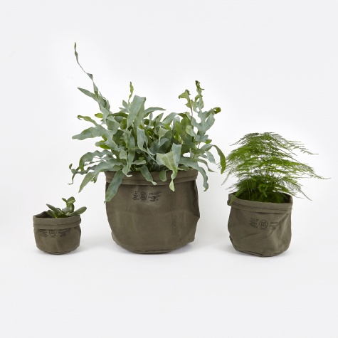 Canvas Pot Cover Set Of Three - Olive
