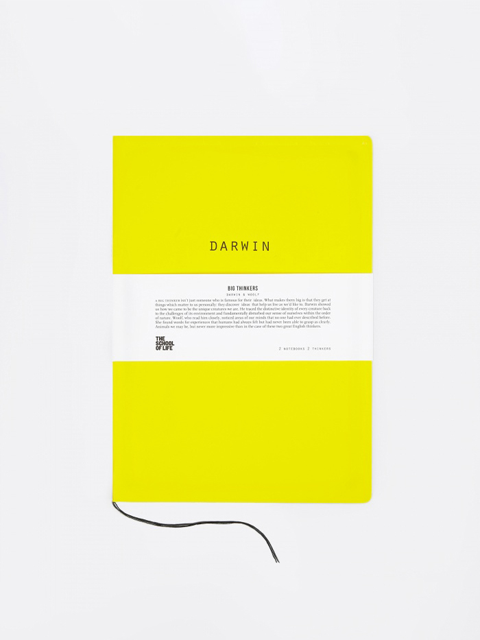 The School of Life Big Thinkers Notebooks : Darwin & Woolf (Image 1)