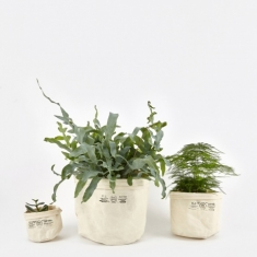 Puebco Canvas Pot Cover Set Of Three - Off White