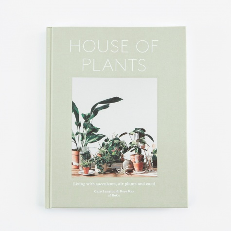Plants - Living with Succulents, Air Plants and Cacti