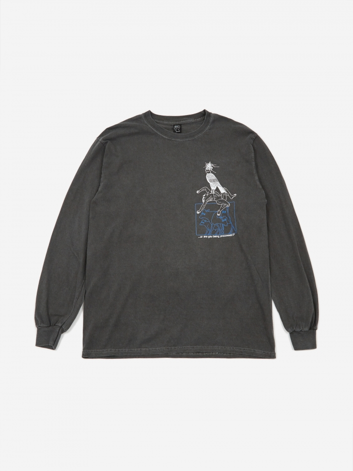Brain Dead Small Animals Longsleeve T-Shirt - Washed Black (Image 1)