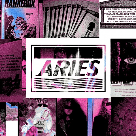 ARIES_INTERVIEW_ICON1.jpg