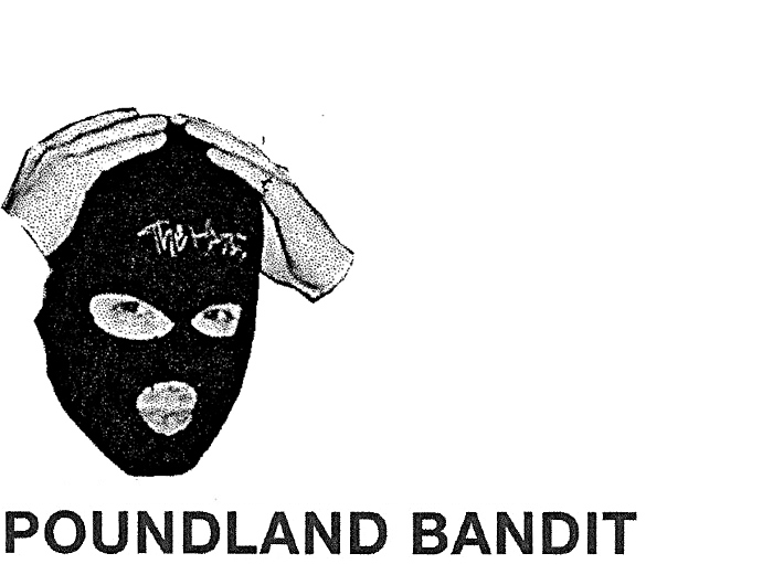 Poundland_Bandit_Profile_Goodhood_01.jpg