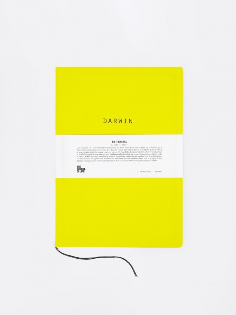 Big Thinkers Notebooks : Darwin & Woolf