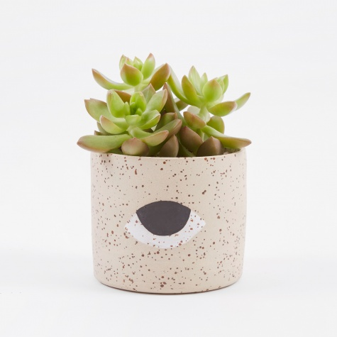 Eye Planter - Large