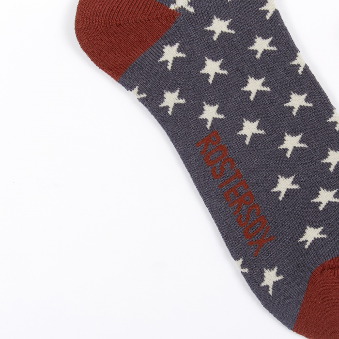 Rostersox USA Old Socks - Navy Star (Image 1)