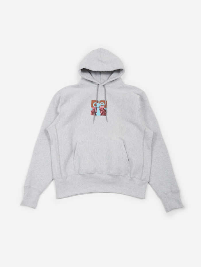AiE Pullover Hooded Sweatshirt - Grey/Peacock (Image 1)