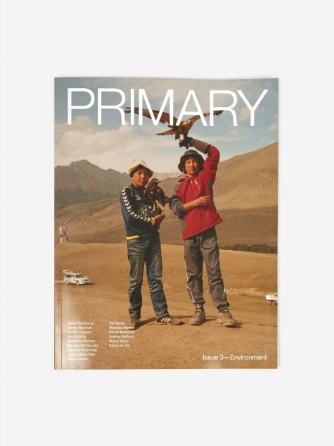 Primary Paper - Issue 3